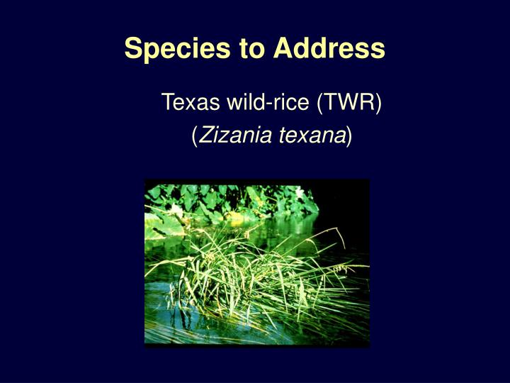 Species to address