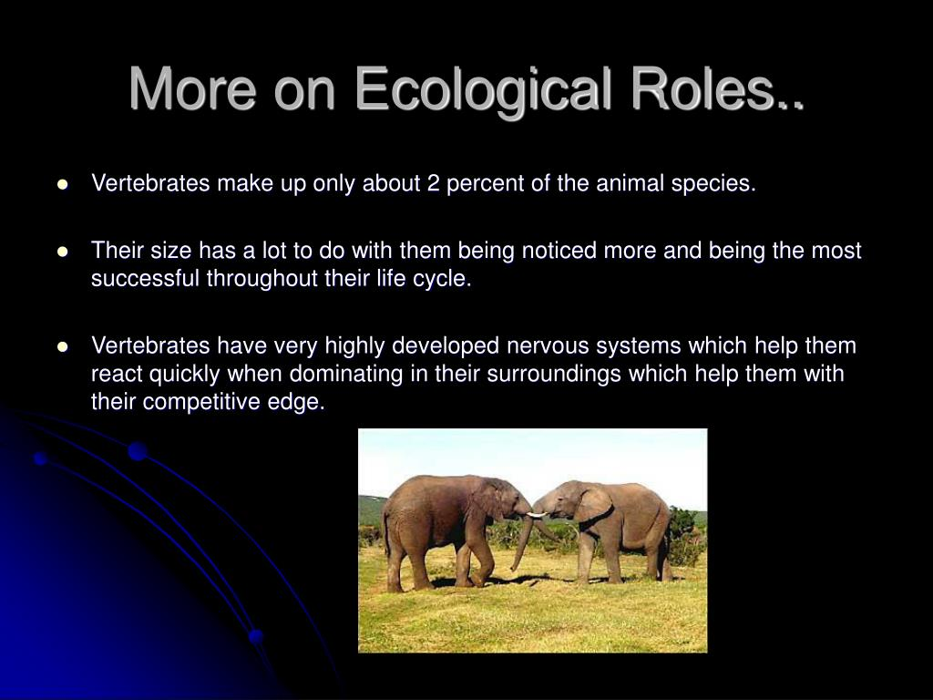 More on Ecological Roles..