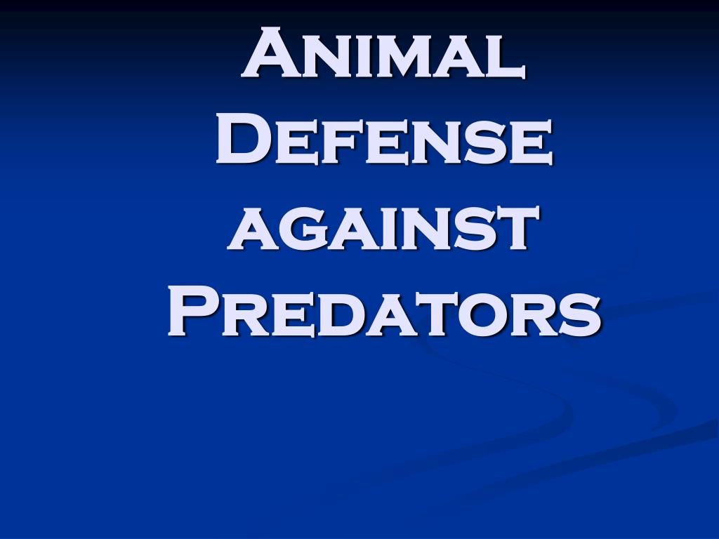 animal defense against predators l.