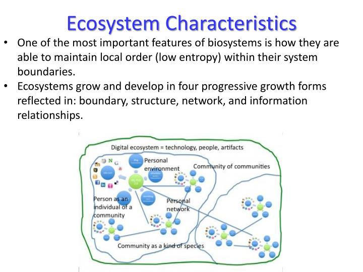 characteristics of ecosystem