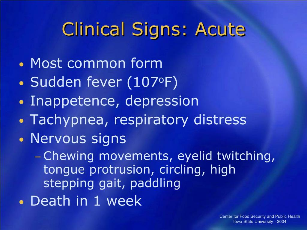 Clinical Signs: Acute