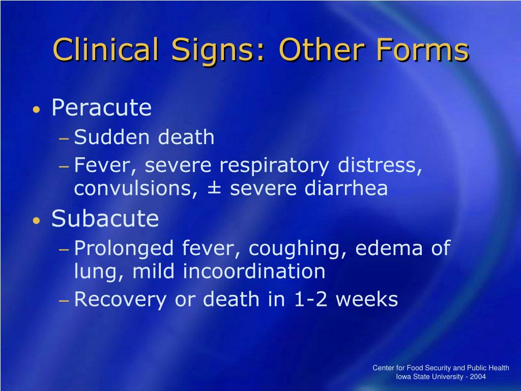 Clinical Signs: Other Forms