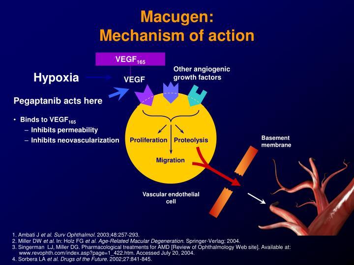 Macugen: