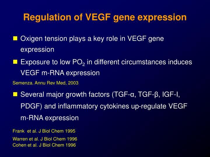 Regulation of VEGF gene expression
