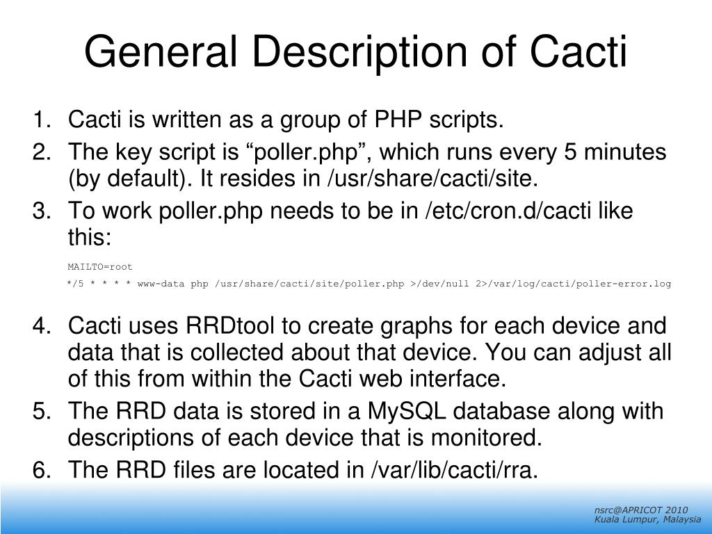 General Description of Cacti