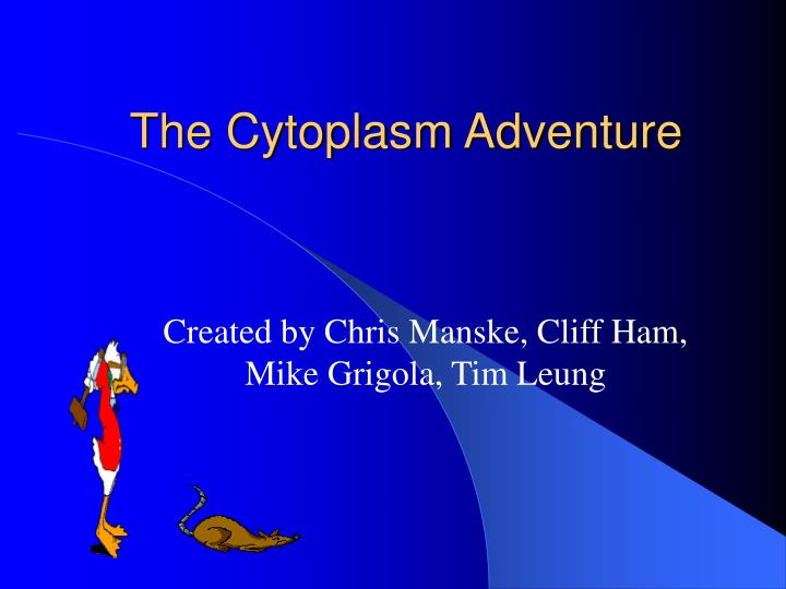 the cytoplasm adventure