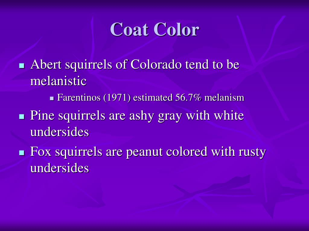Coat Color