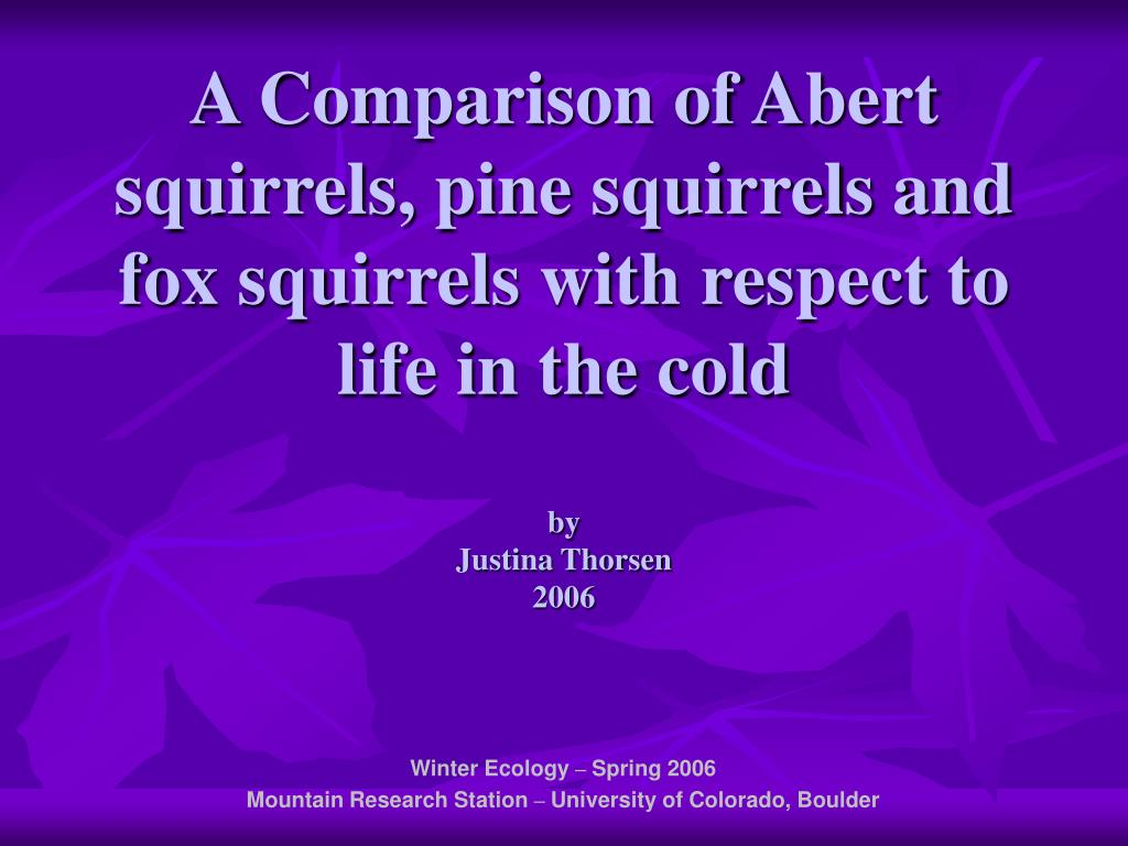 A Comparison of Abert squirrels, pine squirrels and fox squirrels