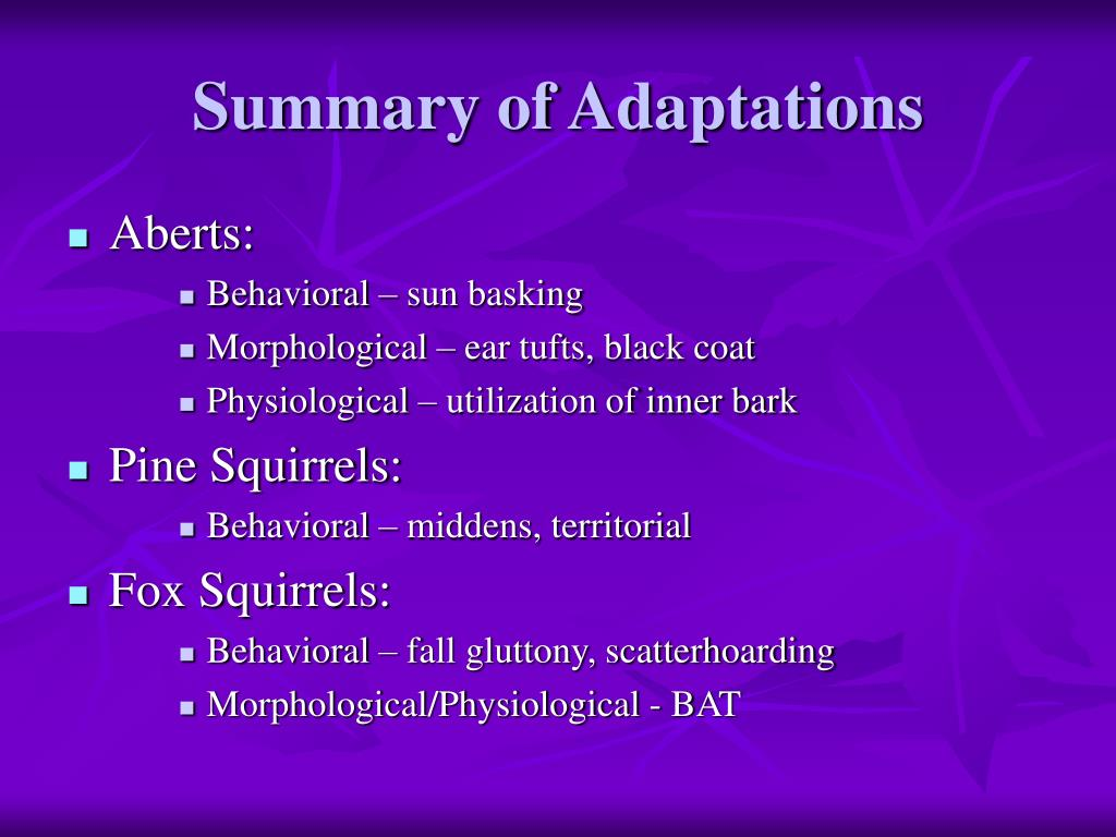 Summary of Adaptations
