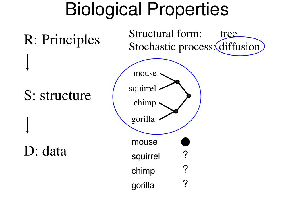 Biological Properties