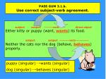 pass gum 3 1 b use correct subject verb agreement1