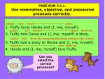 pass gum 3 1 c use nominative objective and possessive pronouns correctly