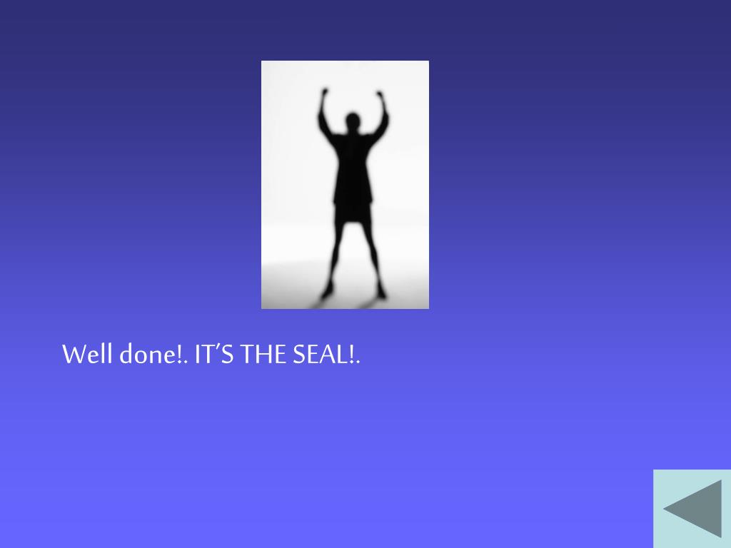 Well done!. IT'S THE SEAL!.