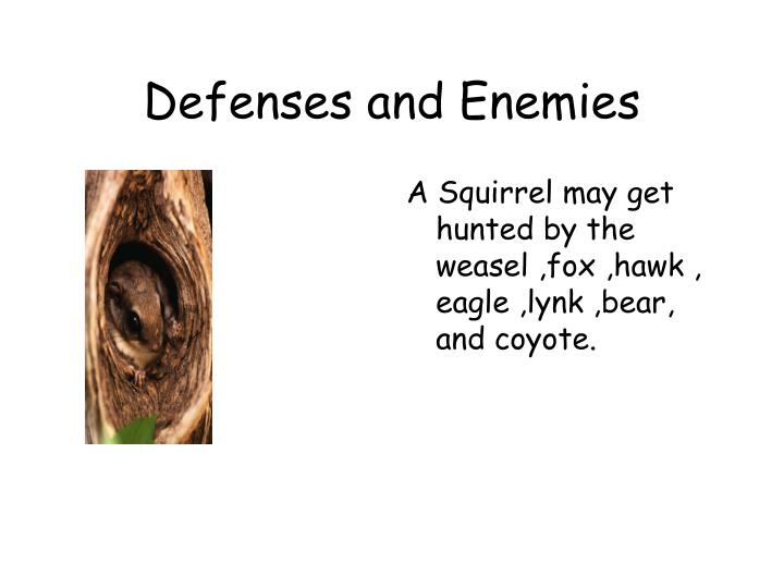 Defenses and enemies