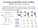 learning grounded causal models goodman mansinghka tenenbaum