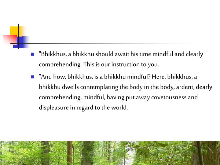 """Bhikkhus, a bhikkhu should await his time mindful and clearly comprehending. This is our instruction to you."
