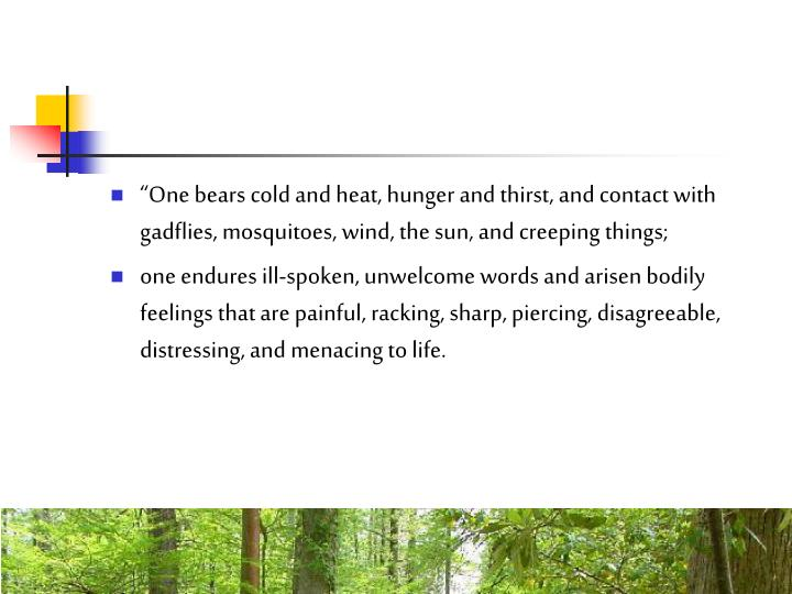 """One bears cold and heat, hunger and thirst, and contact with gadflies, mosquitoes, wind, the sun, and creeping things;"