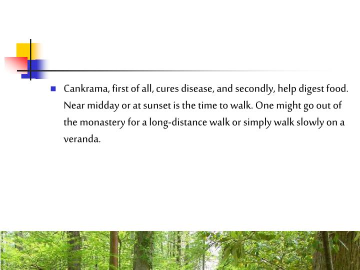 Cankrama, first of all, cures disease, and secondly, help digest food. Near midday or at sunset is the time to walk. One might go out of the monastery for a long-distance walk or simply walk slowly on a veranda.