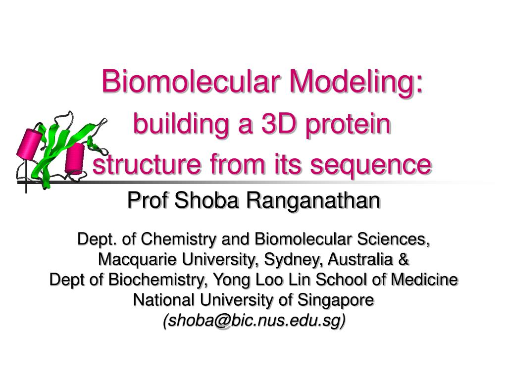 biomolecular modeling building a 3d protein structure from its sequence l.