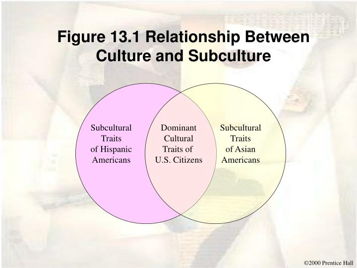 Figure 13.1 Relationship Between Culture and Subculture