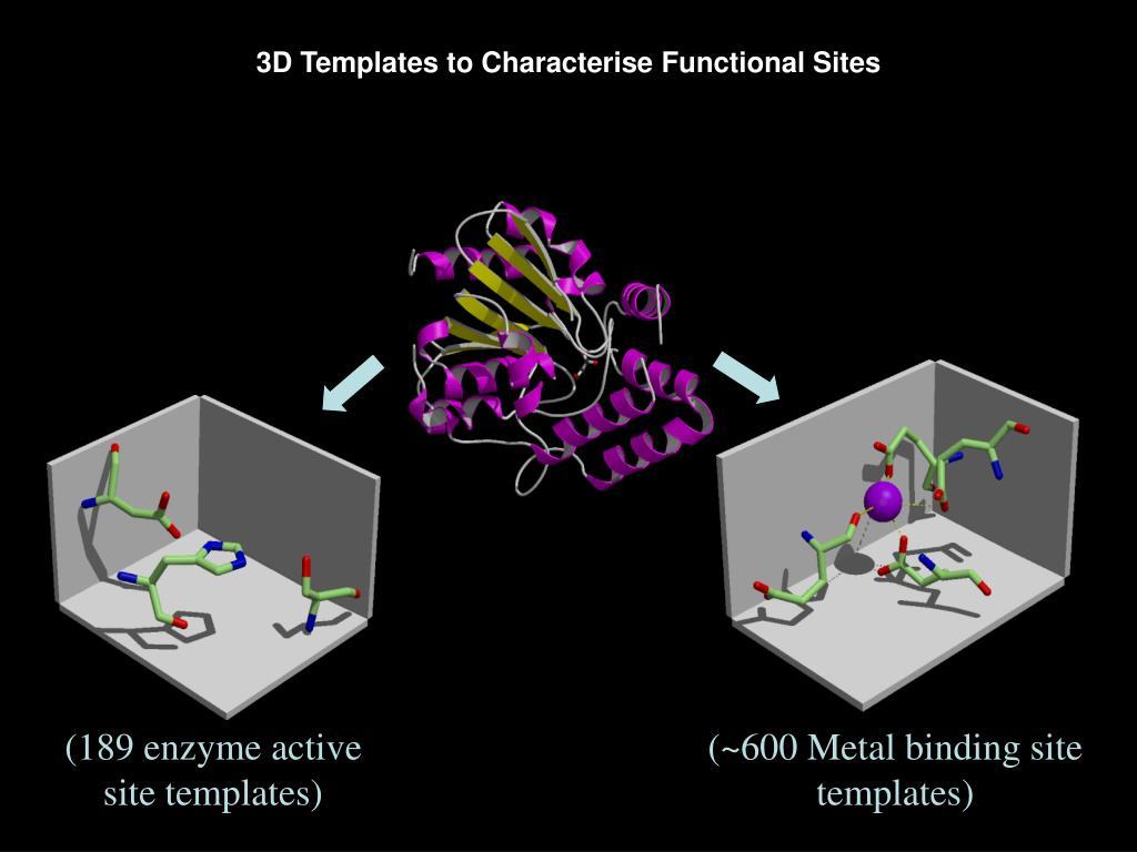 (~600 Metal binding site templates)