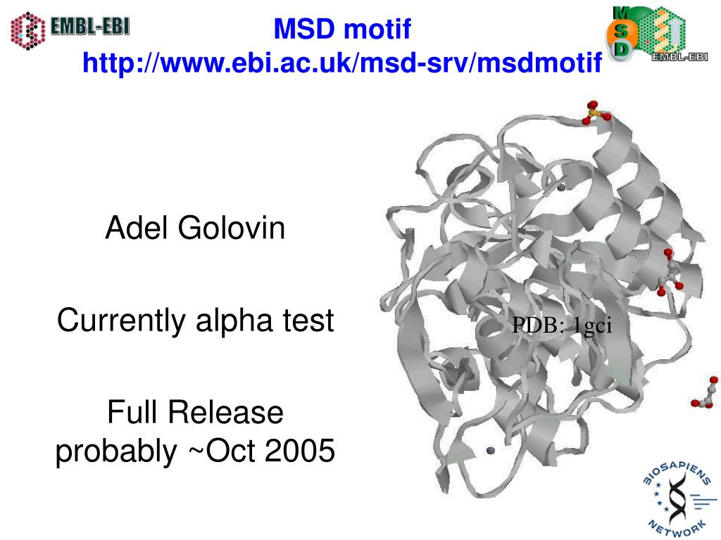 MSD motif