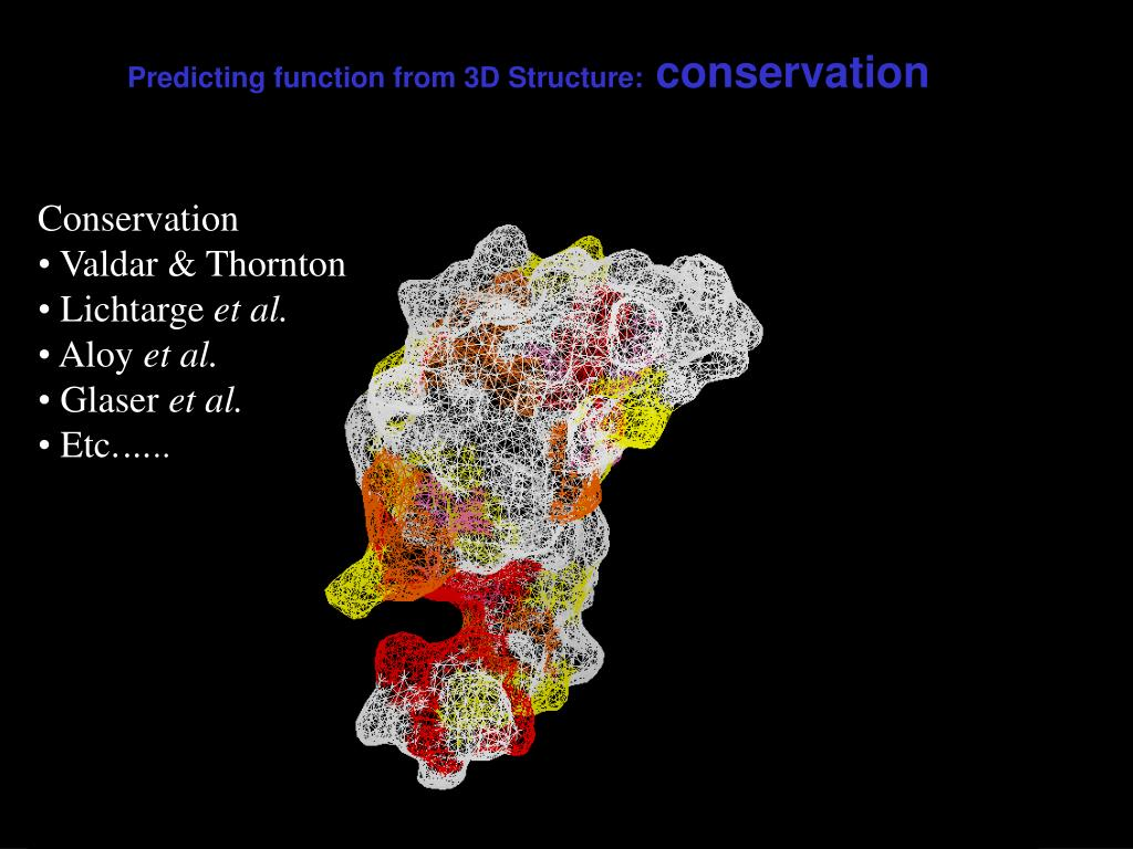 Predicting function from 3D Structure: