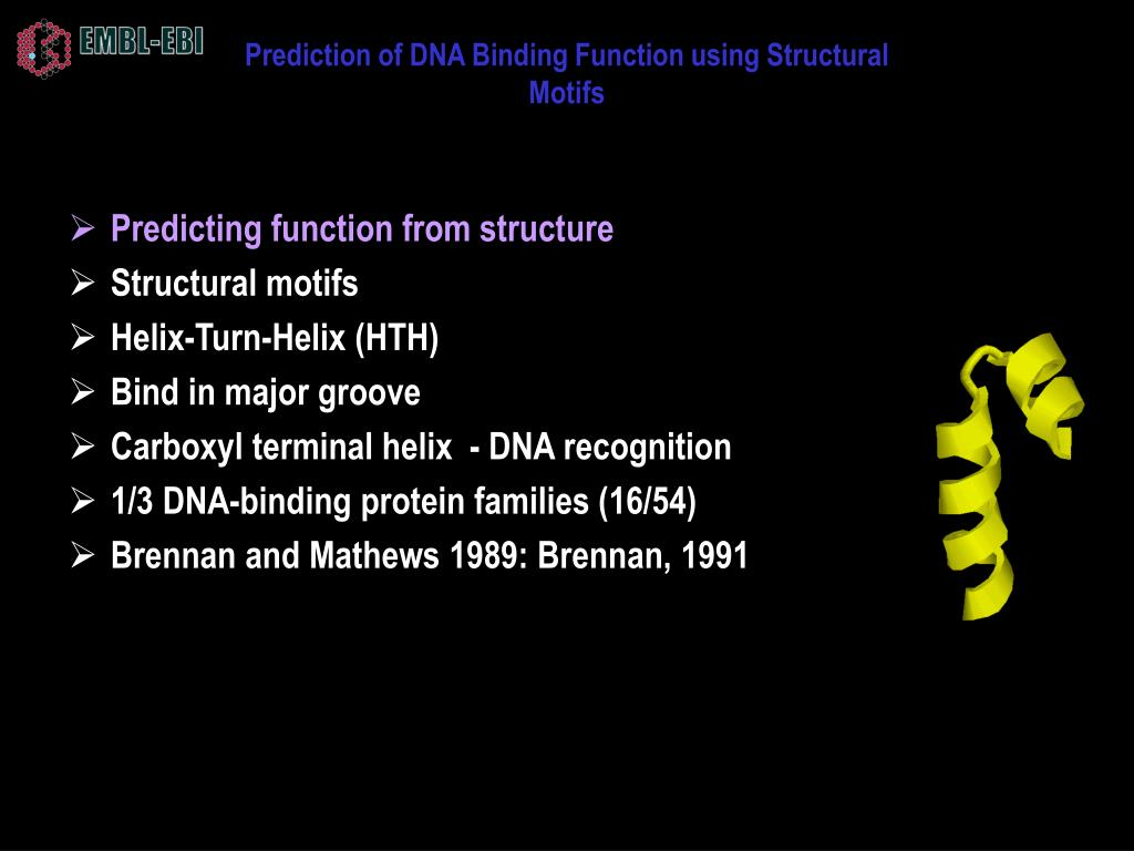 Prediction of DNA Binding Function using Structural Motifs