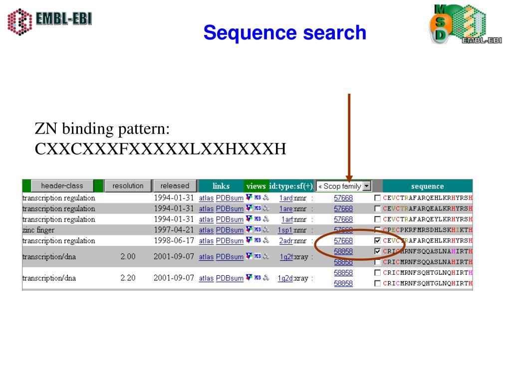 Sequence search