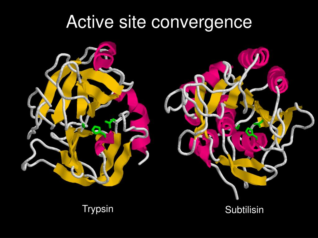 Active site convergence