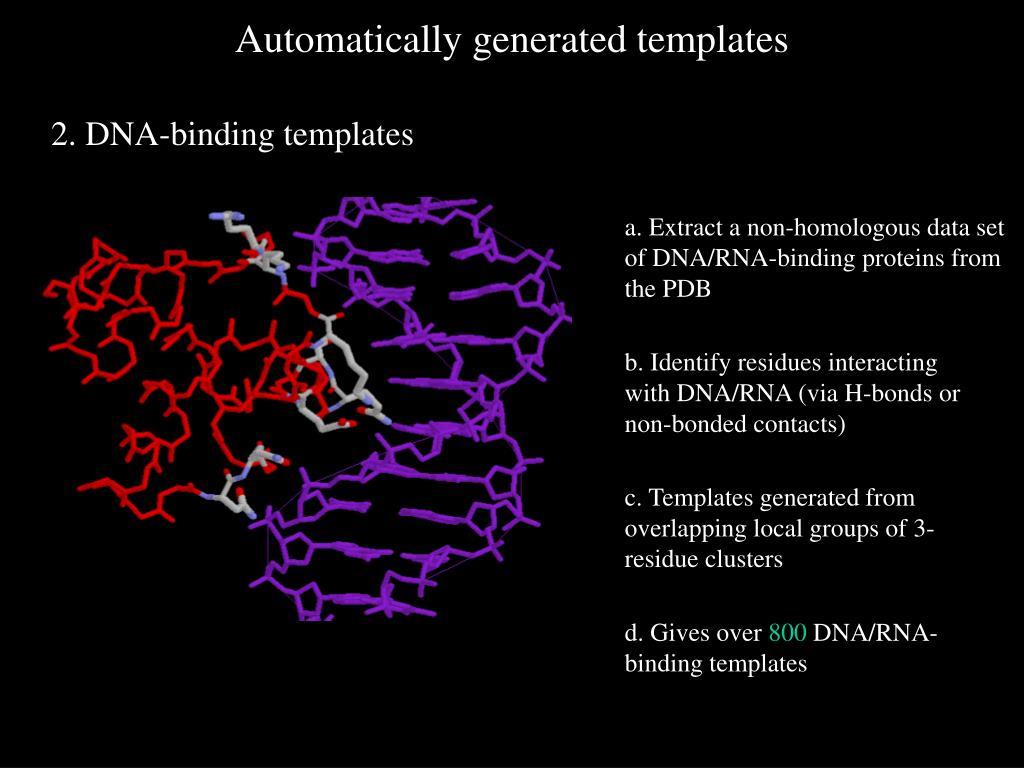 2. DNA-binding templates