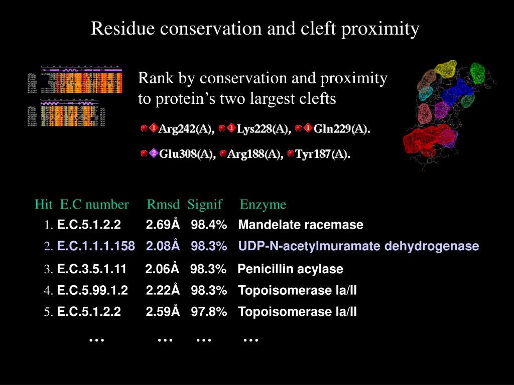 Rank by conservation and proximity to protein's two largest clefts