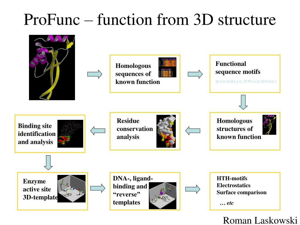 ProFunc – function from 3D structure
