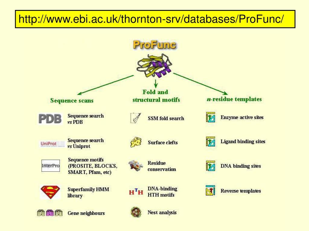 http://www.ebi.ac.uk/thornton-srv/databases/ProFunc/