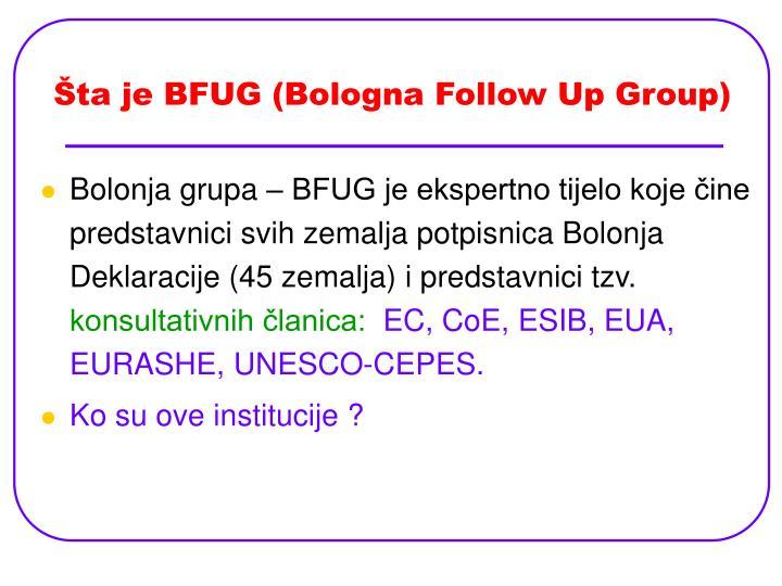 Šta je BFUG (Bologna Follow Up Group)