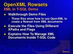 openxml rowsets xml in t sql demo