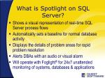 what is spotlight on sql server
