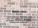 hebrews 5 141