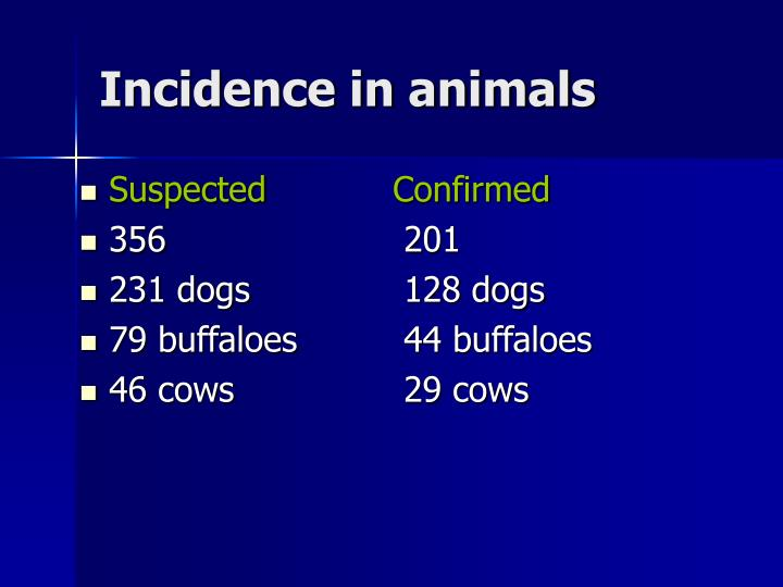 Incidence in animals