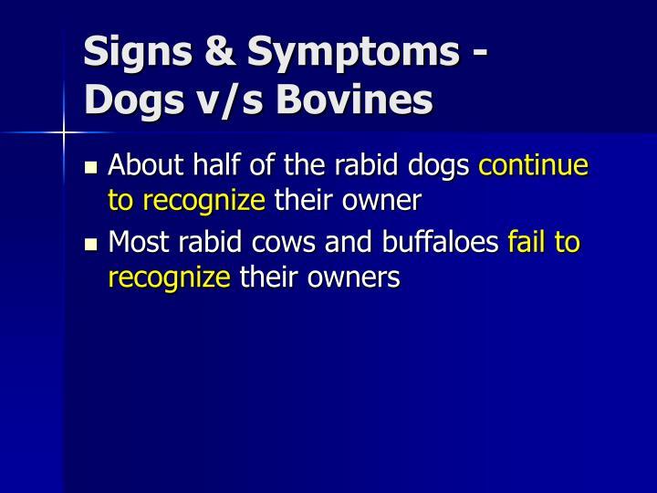 Signs & Symptoms -