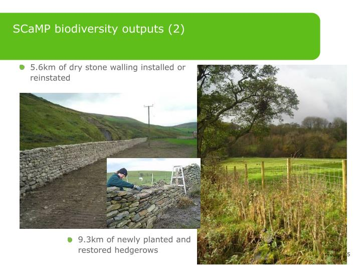 SCaMP biodiversity outputs (2)