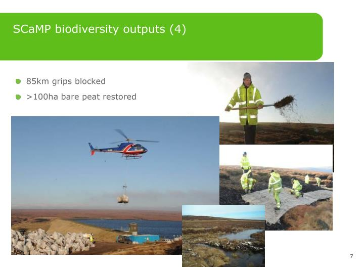 SCaMP biodiversity outputs (4)