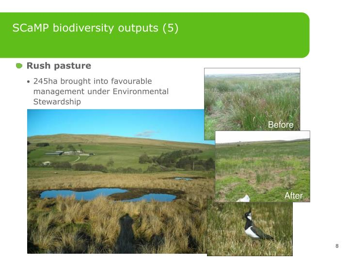 SCaMP biodiversity outputs (5)