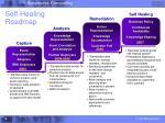 self healing roadmap