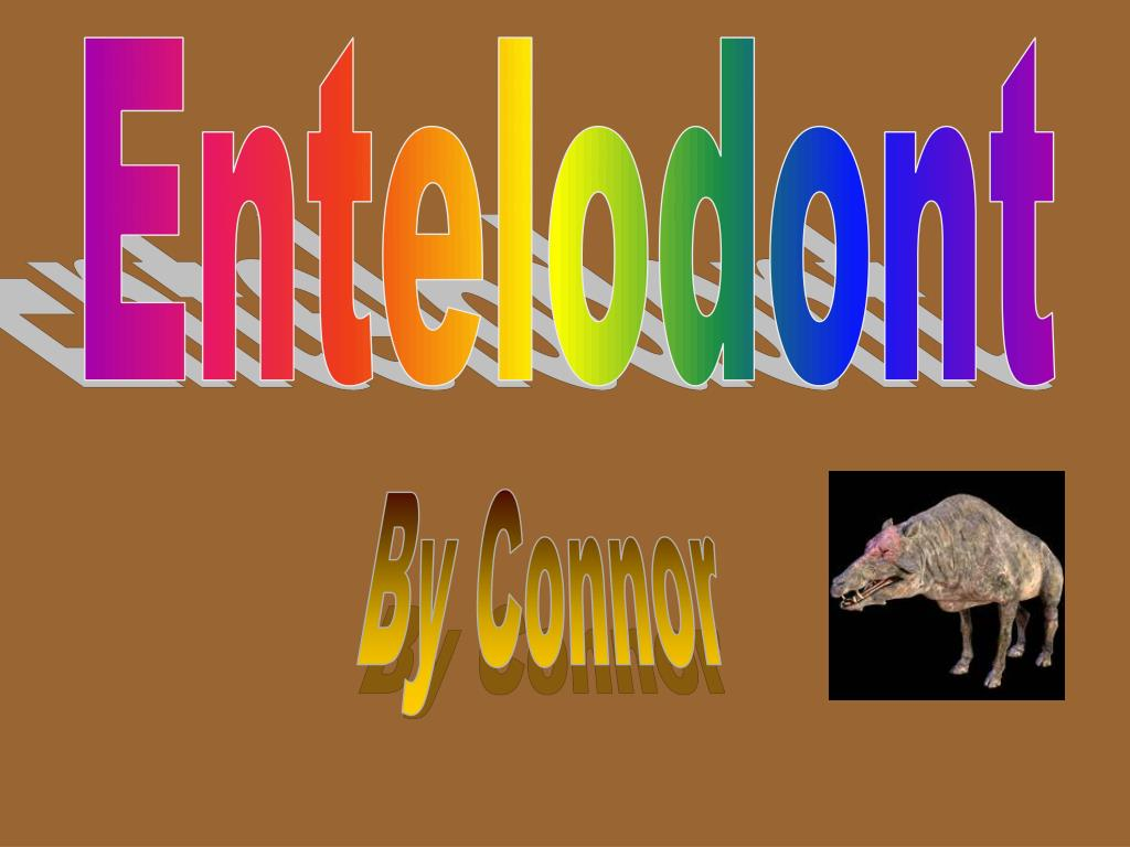 Entelodont