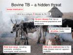 bovine tb a hidden threat