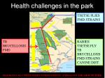 health challenges in the park