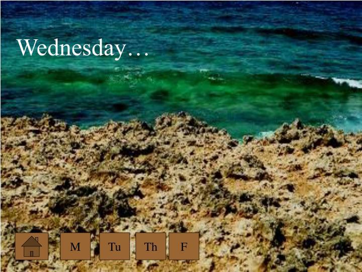 Wednesday…