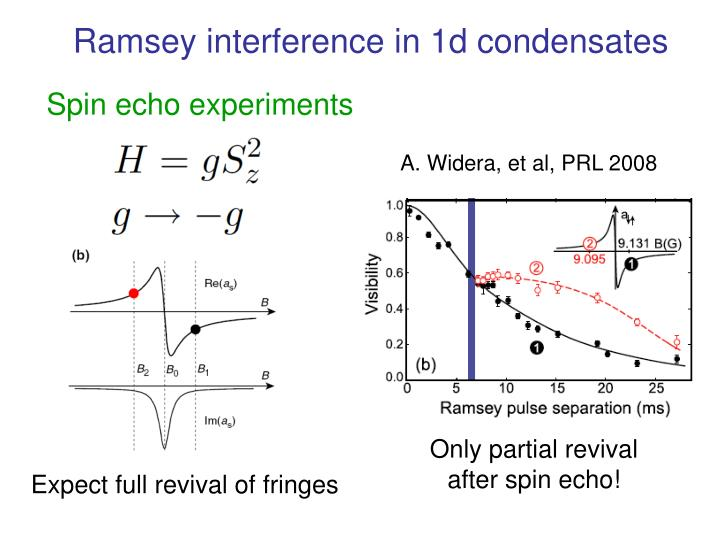 Ramsey interference in 1d condensates