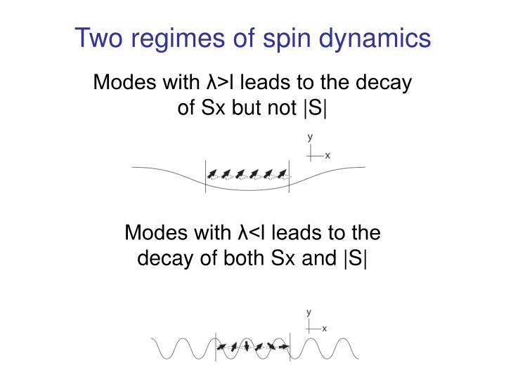 Two regimes of spin dynamics